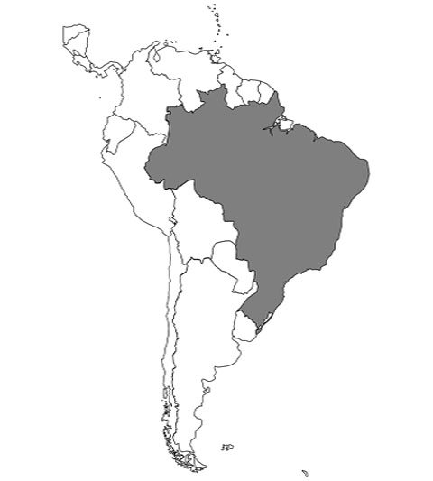 「ブラジル」