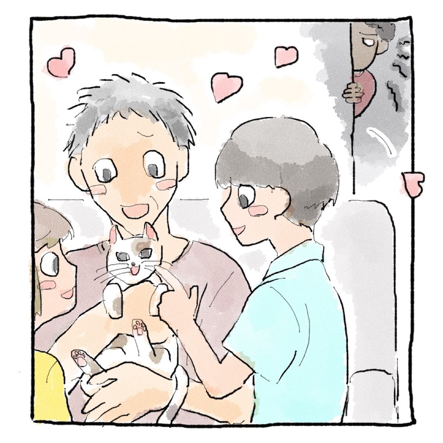 新しく飼った猫に家族が甘すぎる